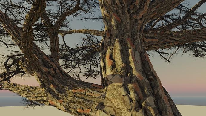 disp_branches