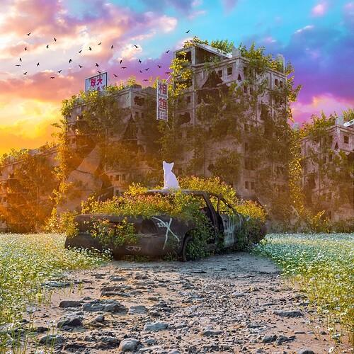 overgrown-01