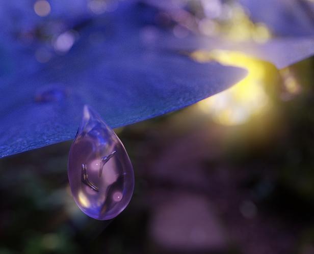 Life in a rain drop