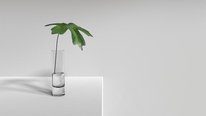 Simplicity1r
