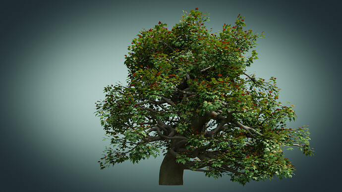 Old_Tree_A_010225