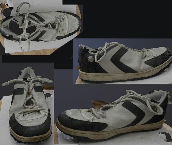 Shoe_Photogrammetrry_test_Meshroom_nolight