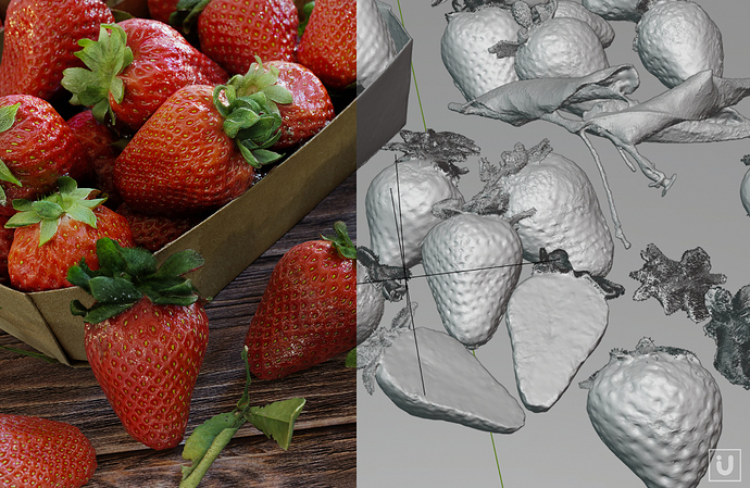 i-U%20Studios%20-%20Laserscan%20Example%20Strawberries%20%20B3D%20Allegorithmic%20Example%2003_vers2a
