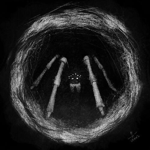31_Crawl