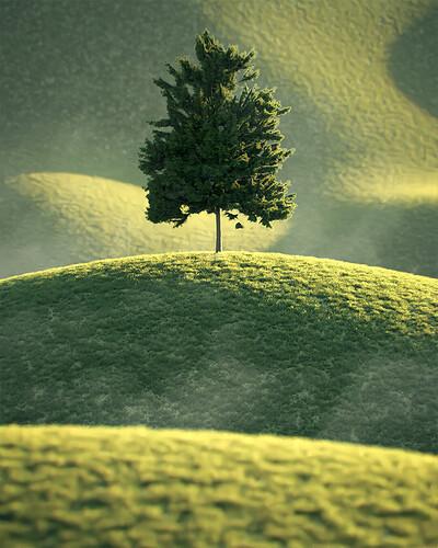 250_Tree_Mountain