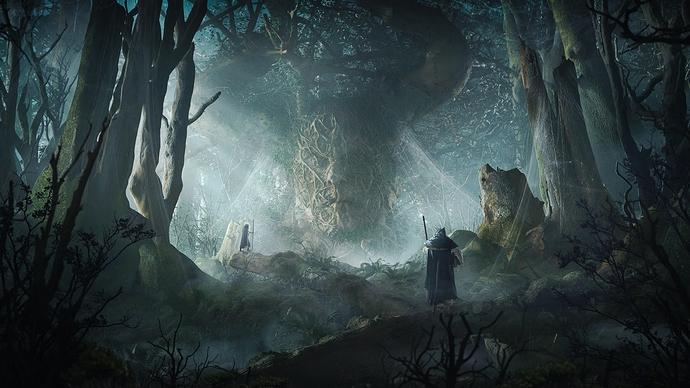maciej-drabik-forest-front-d2b-sharp2 c3