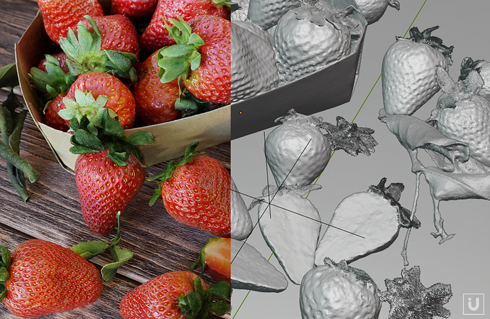 i-U%20Studios%20-%20Laserscan%20Example%20Strawberries%20%20B3D%20Allegorithmic%20Example%2004_vers2a