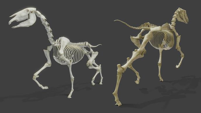 RealisticHorse_Skeleton_WIP12
