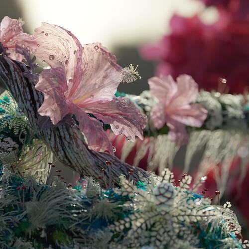 flower scene instagram