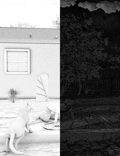 02-06-21_House&Yard_AO&Shadow