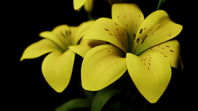 004_Lily_View