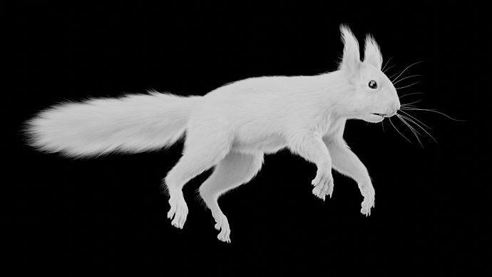 Squirrel_Osipkov_08