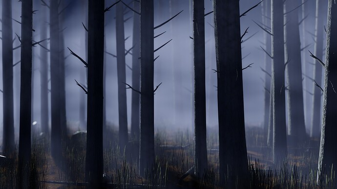 pine_forest_2