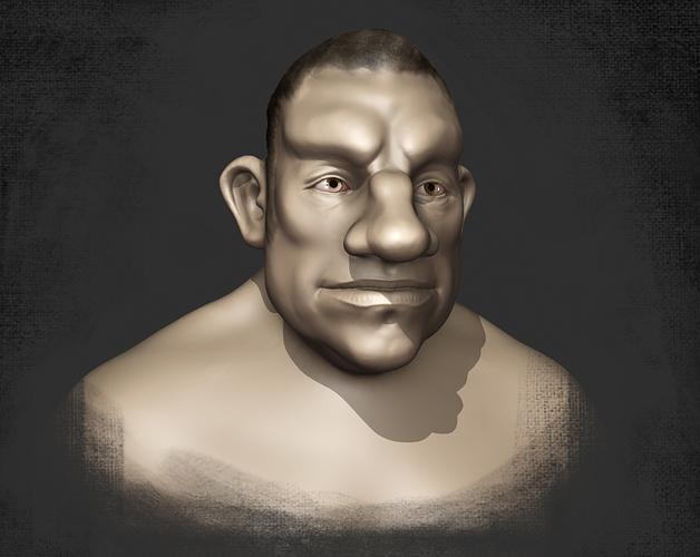 BoxerBust