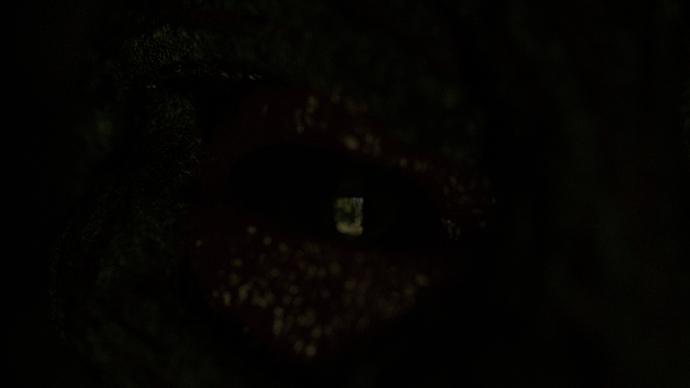 eye0110