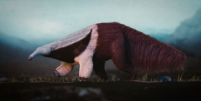 Anteater_38_pos01_compressed