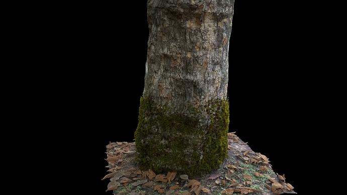 Tree_Test_01