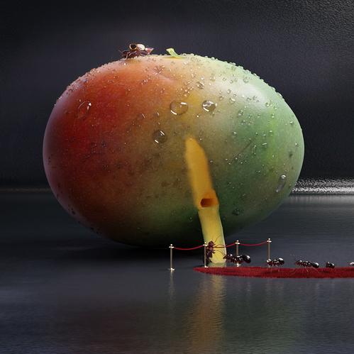 still_mango_38