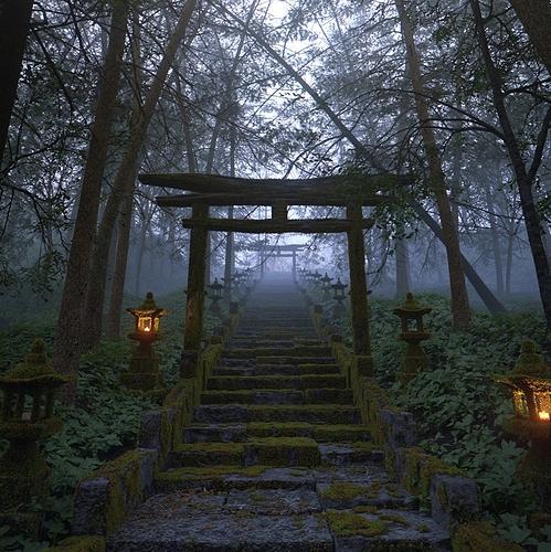 temple-steps-2_01_crop