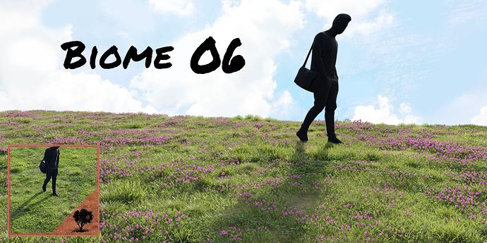 Biome06