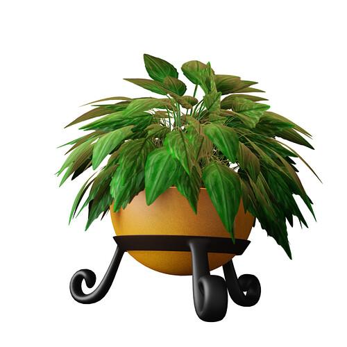 chinese evergreen in orange bowl trans shot.png