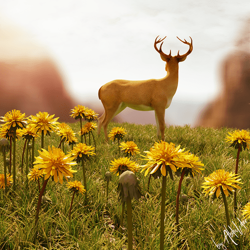 deer-beauty_enhanced