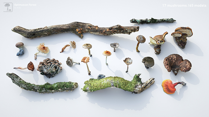 Collection_Output_Mushrooms