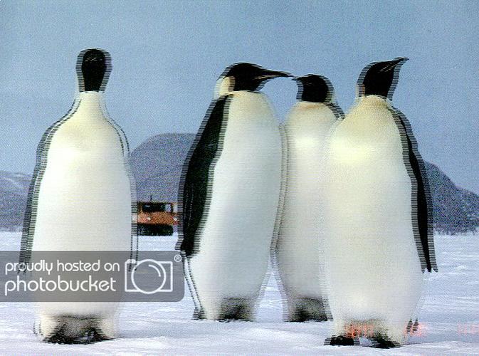 http://img.photobucket.com/albums/v240/f1969ob/Image0024.png