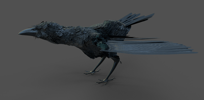 Corvids_WIP_feathered_update2