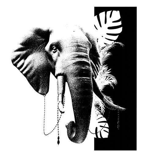 6_elephant_encrage