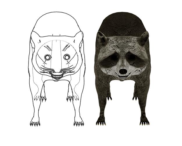 LANPR-cycles_raccoon_v1