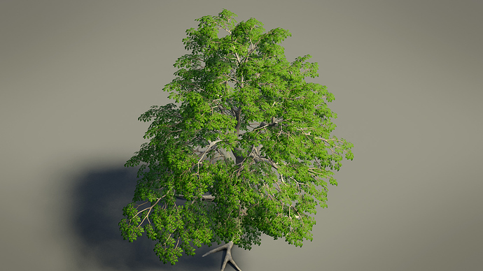 Tree_Preview_02