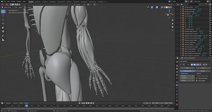 human-skel_disc3