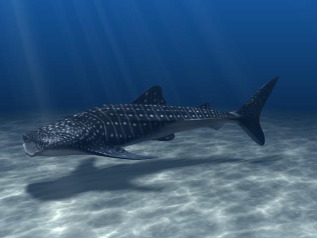 Realistic Underwater Lighting And