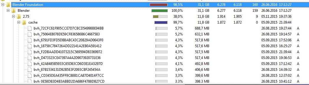 31 GB of BVH cache stored on my Harddrive - Technical Support