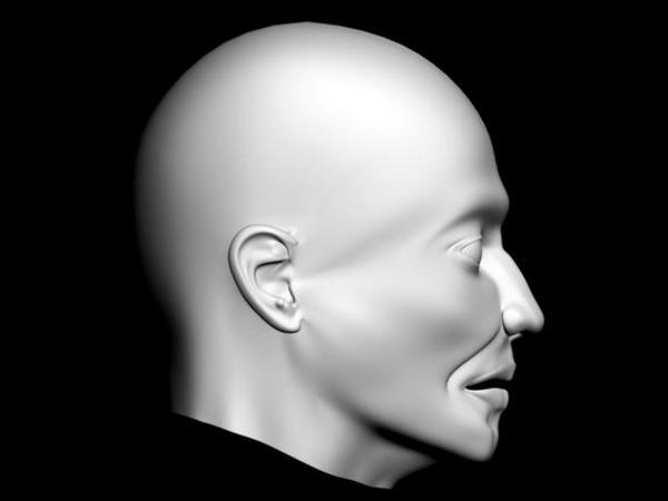 http://fc01.deviantart.net/fs43/f/2009/146/c/c/3d_max_head_side_shot_by_MetalHead7777.jpg
