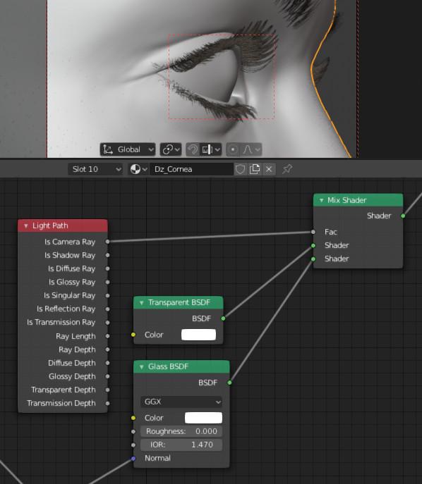 G3F_shape_02_import29_microbump_render1_cornea_nodes