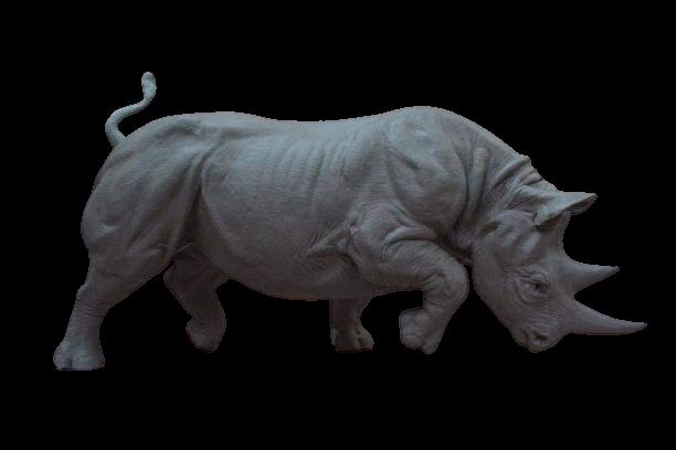 Charging_Male_Black_Rhinoceros-removebg-preview