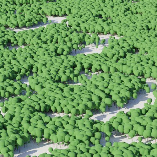 cluster_wood_dense