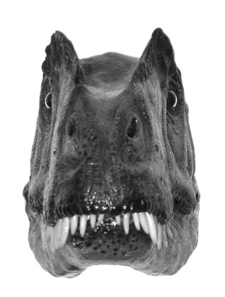 Image result for trex field of view