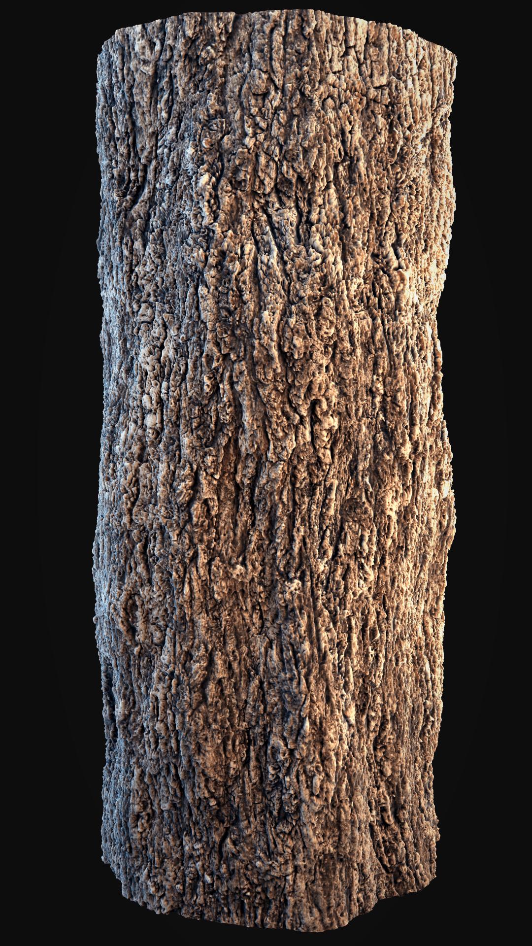 Wood Texture Seamless Pattern