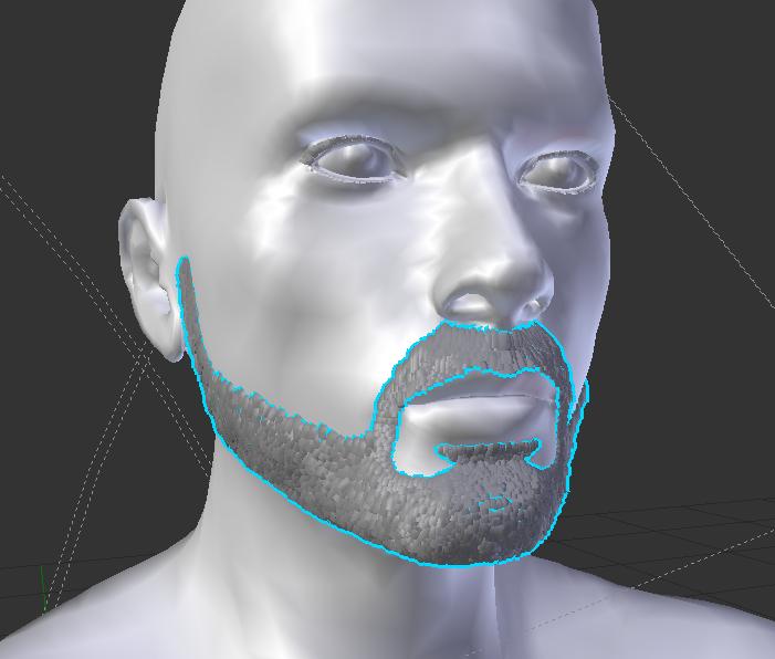 BeardMesh