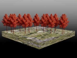 red-forest
